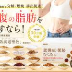 煎 漢 方法 痩せる 生 生漢煎(しょうかんせん)防風通聖散って本当に痩せる効果ある?成分や飲み方を調査してみた |
